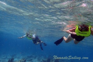 Snorkeling The Key West - Go For It!