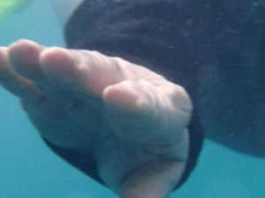A snorkelers outstretched hand