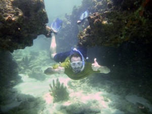 Snorkeler swimming under coral