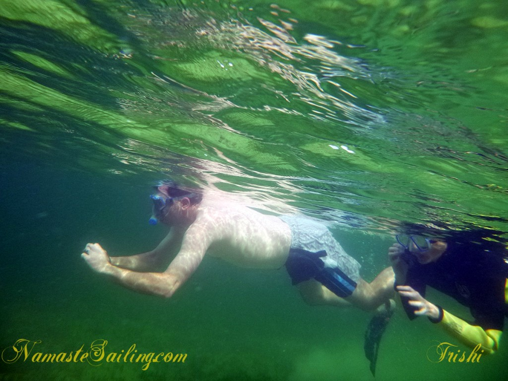 Two snorkelers swim side by side.